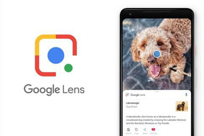 Google Lens İçin İnternet Bağlantısına Gerek Kalmadı